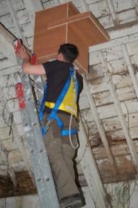 Barry Installing nesting box